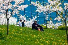 """""""Swedbank"""" antros pakopos pensijų fonduose – 1 mlrd. eurų"""
