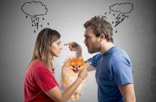 Po poros skyrybų – šuns dalybos