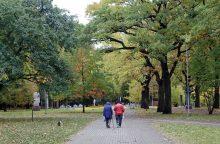 Bandys suderinti parką ir kapines