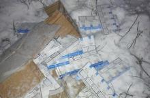 Su kontrabandos kroviniu įkliuvo 19-metis